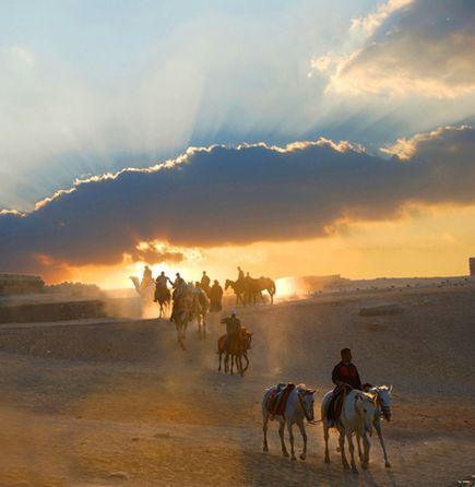 Horseback Riders, Giza
