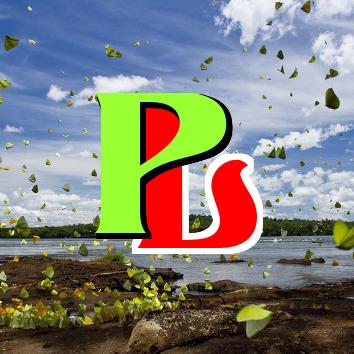 Logo-PICZLoad