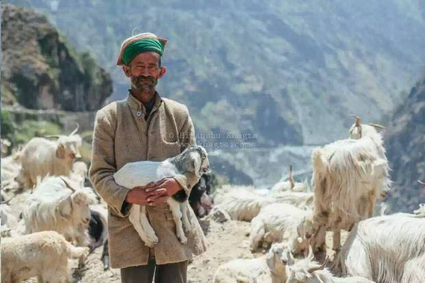 Pals-in-Kinnaur-Himachal-India