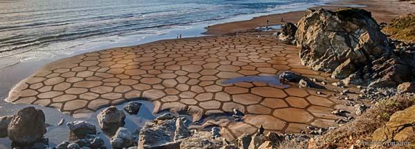 MindBLOWN-A-Single-Rake-To-The-Beach-Andres-Amador's-ArtScape10
