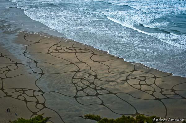 MindBLOWN-A-Single-Rake-To-The-Beach-Andres-Amador's-ArtScape11