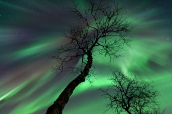 #NorthernLights-Most-Breat-taking-Photographs-Of-Aurora-Borealis2