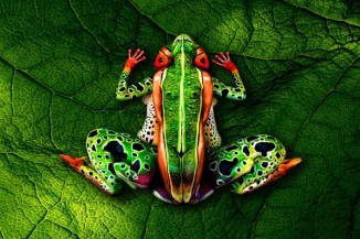 wesome-crazy-body-paint-3