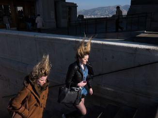 Windswept-Marseille