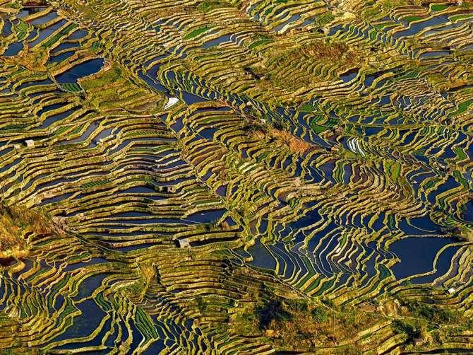 Terraces-of-Yunnan-CHINA