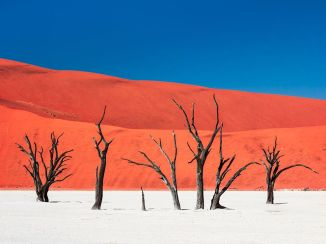 SilenceAndHeat-DeadVlei-Namibia