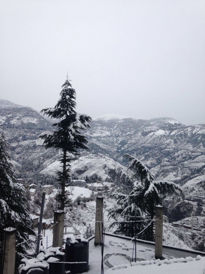 Snowfall2016ShimlaHimachalINDIA4